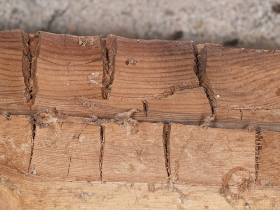 Bilde er sprekkeklosser i treverk forårsaket av ekte hussopp angrep