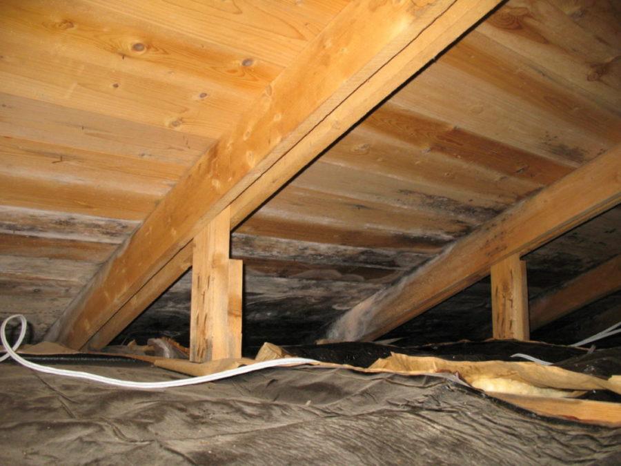 Bilde av et loft hvor det har utviklet seg muggsopp og barksopp.