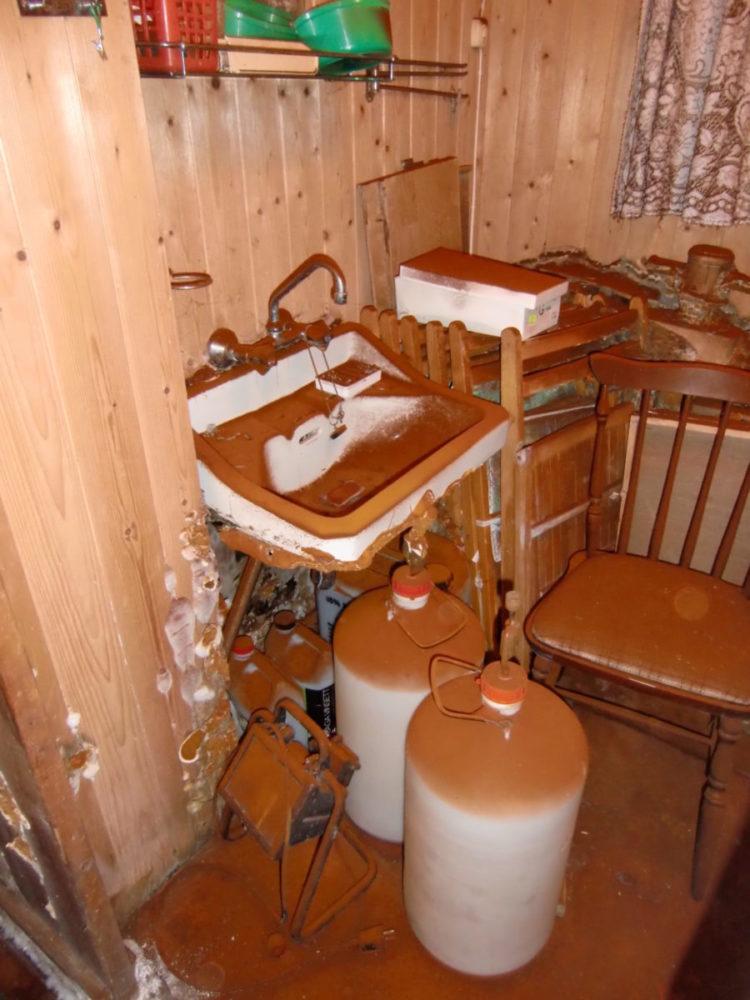 Møbler og innredning er dekket av sporestøv fra ekte hussopp.