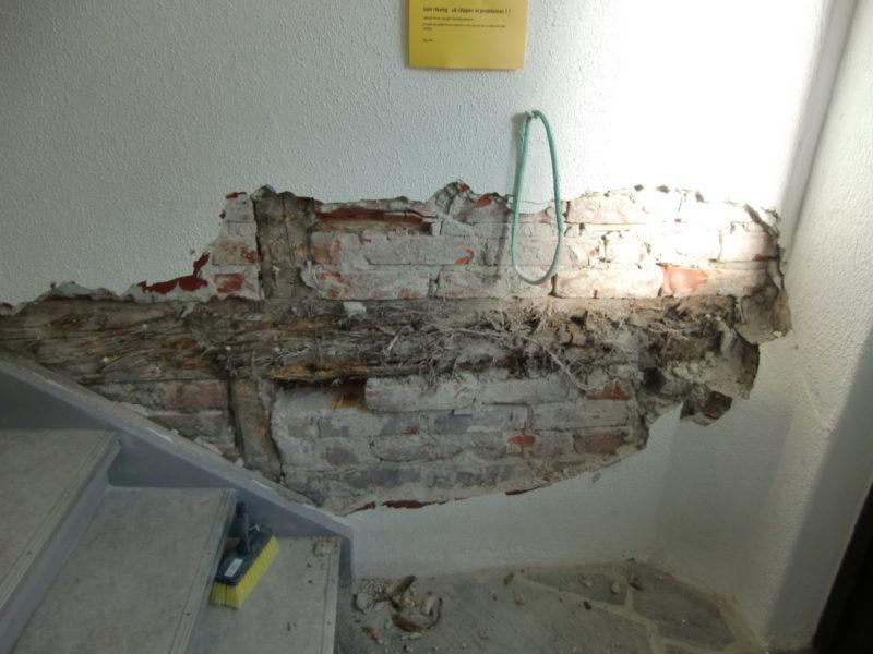 Ekte hussoppangrep i treverket bak murpuss.