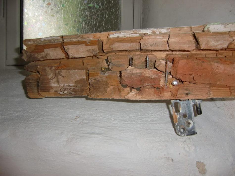 Treverket har krympet og sprukket opp i terninger (sprekkeklosser).