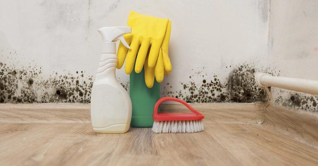 Muggsopp, vaskemiddel, børste og hansker